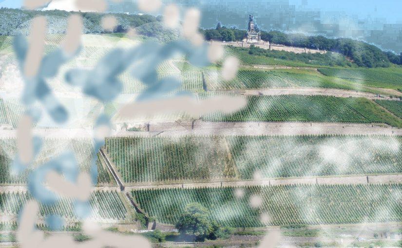Bargener Moschtkrug sendet perfektes Bild vom Mittelrhein